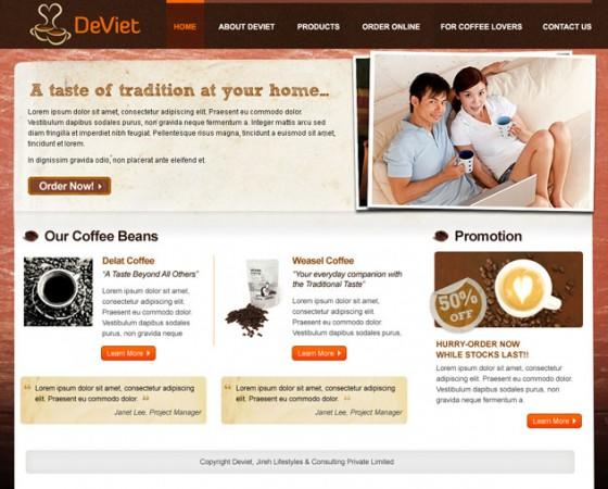 Deviet logo and website design